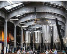 Brewery Feasibility